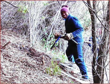 Bracing himself on the steep slopes, Sakhe clears an area for the Chainsaw Operator to work, a role for which he now is also qualified as a result of training on the team